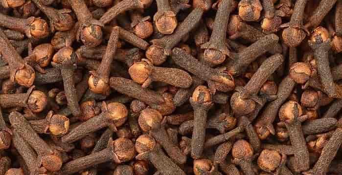 مصرف میخک برای درمان آرتروز زانو